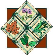 Four Seasons 2