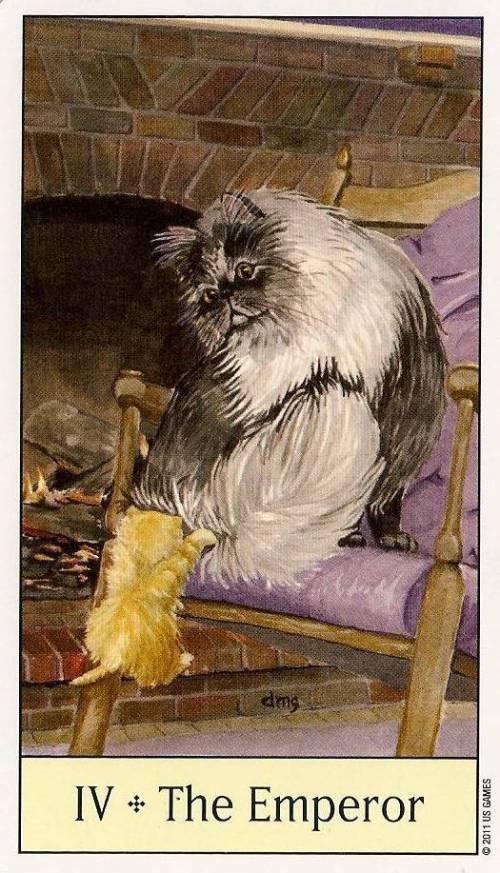 Cats_Emperor