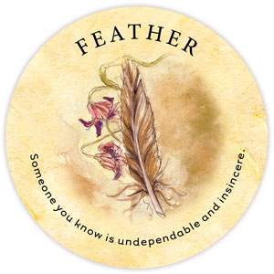 TeaLeaf_Feather