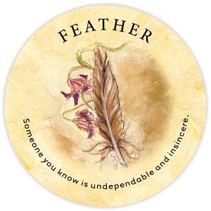 TeaLeaf_Feather